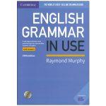 English Grammar In Use Fifth Edition