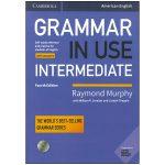 American Grammar in Use Intermediate 4th Edition